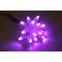 LED-Chain Purple